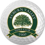 logo_auburn-valley